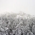 Снег повсюду