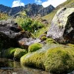 Ручей под горой