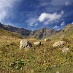 Альпийские луга у о. Мзы