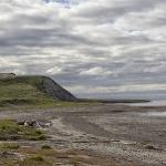 На берегу Карского моря